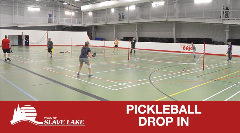 Pickleball Drop In