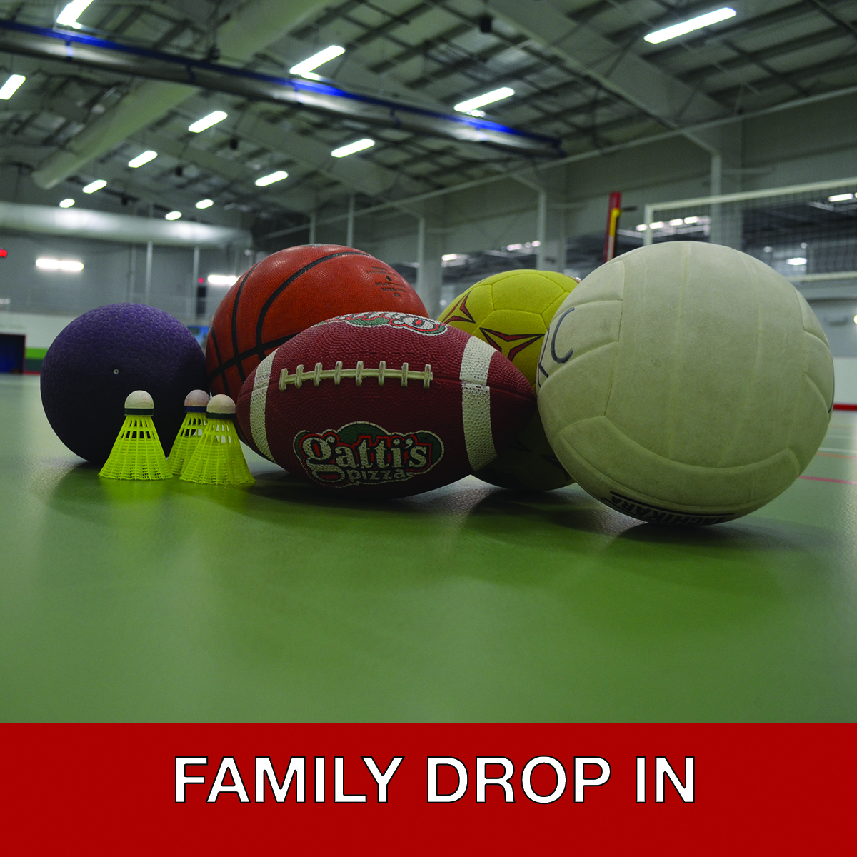 Family Drop In