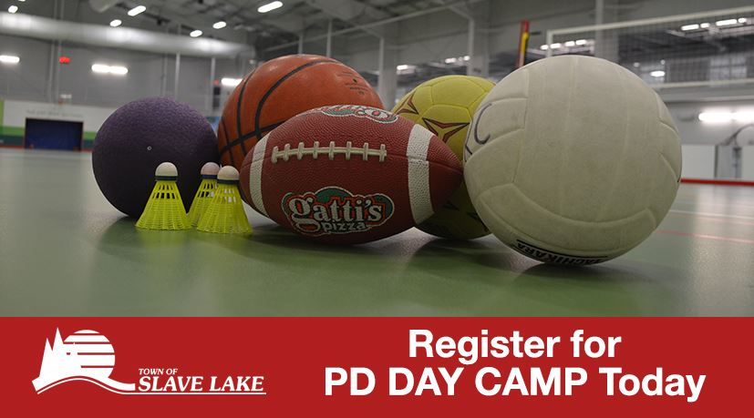 PD Day Camp