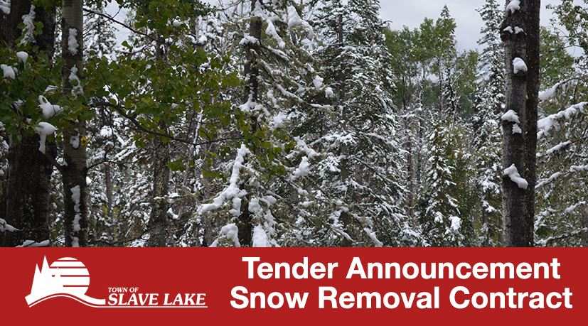 Bid Tender - Snow Removal